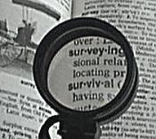 6x Magnifier